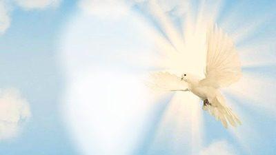 Santo Spirito vieni in noi